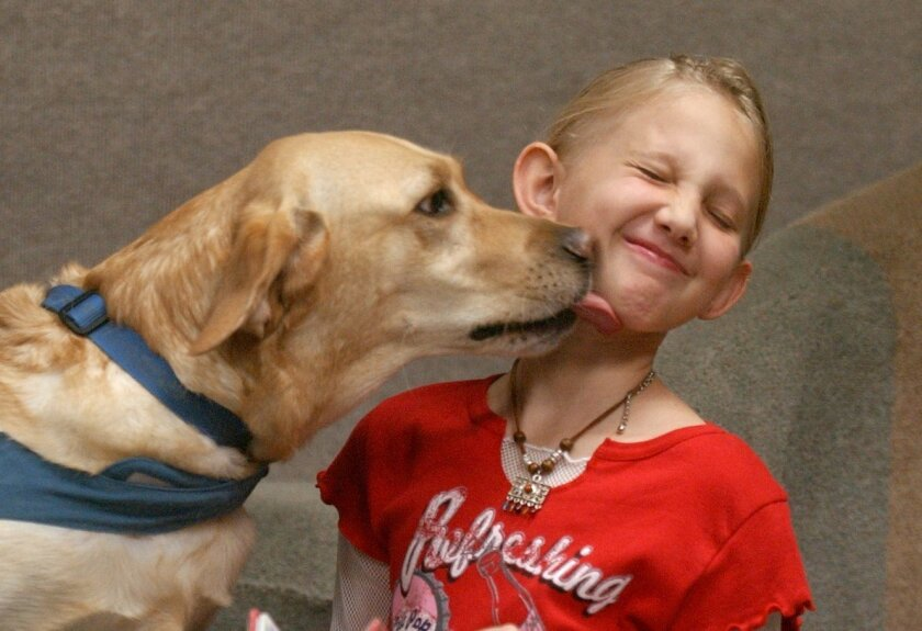 """Suzette, a yellow Labodor retriever, gives a kiss at the Oceanside Library's """"Paws To Read"""" program in this file photo from 2003."""