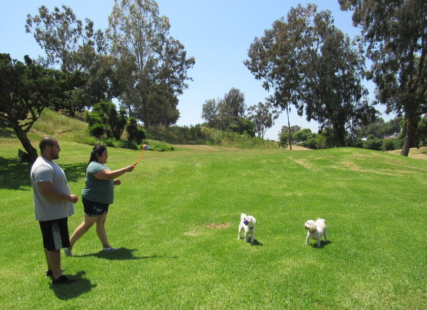 Chris and Maria Alfaro of Normal Heights play with their dogs Sophia and Charlie at the recently reopened MacArthur Park in La Mesa.
