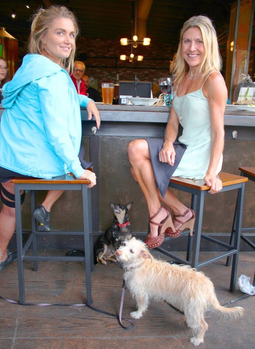 Pamela Martin and Jenny Stevens with their canine companions attend the Paws & Pints fundraiser May 28, 2015 at La Jolla Brewing Co.