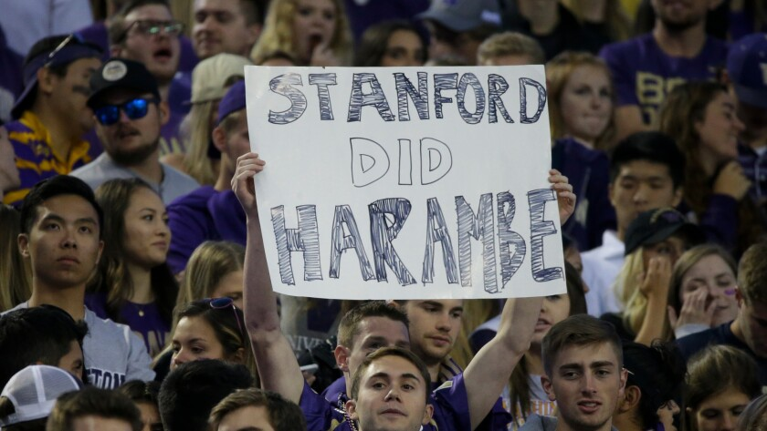 """A University of Washington student holds a """"Stanford Did Harambe"""" sign at a college football game on Sept. 30."""