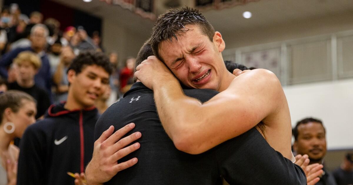 Unbeaten Torrey boys top seed in basketball's regional Open Division