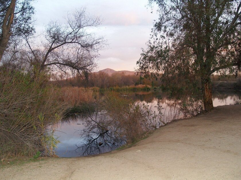 The Sweetwater Reservoir Riding and Hiking Trail has places to relax and watch nature. The trailhead is off San Miguel Road in Bonita. (Wendy Fry photo)