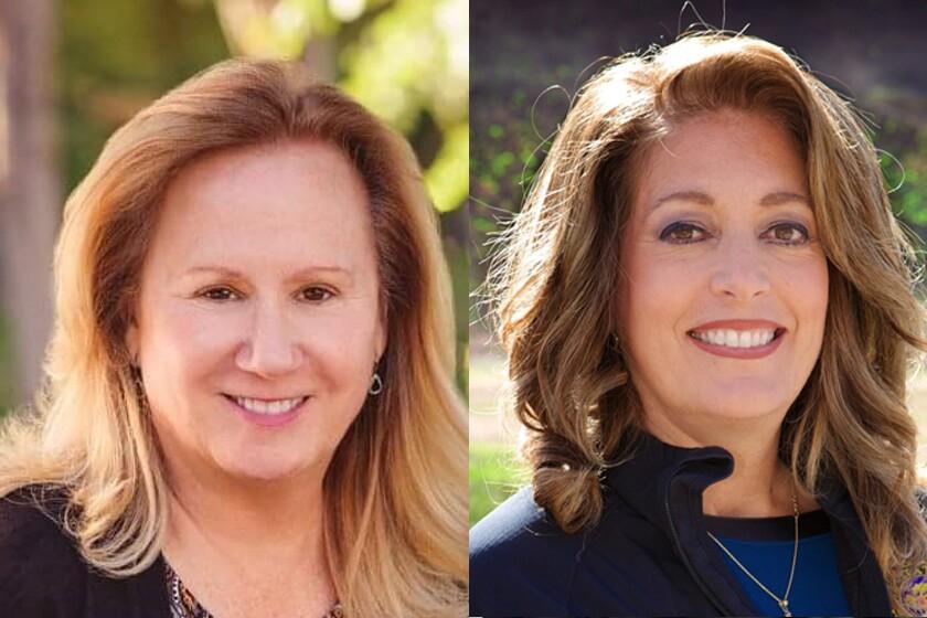 Democrat Kate Schwartz is challenging incumbent Republican Assemblywoman Marie Waldron.