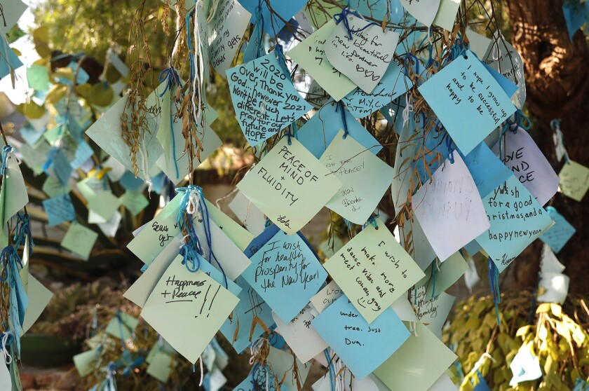 Sherman Library & Gardens tree holds about 4,000 wishes for 2021
