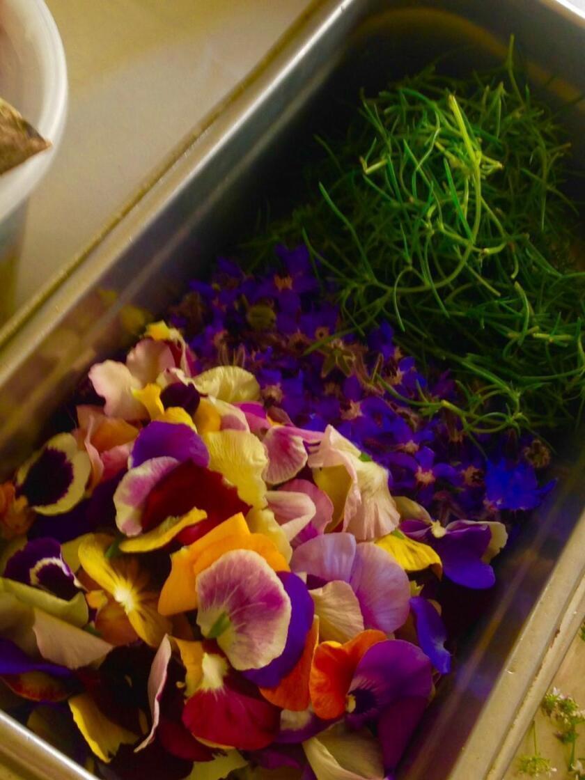 kitchen-shrink-flowers-jpg-20190424