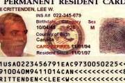 7 facts about the green card