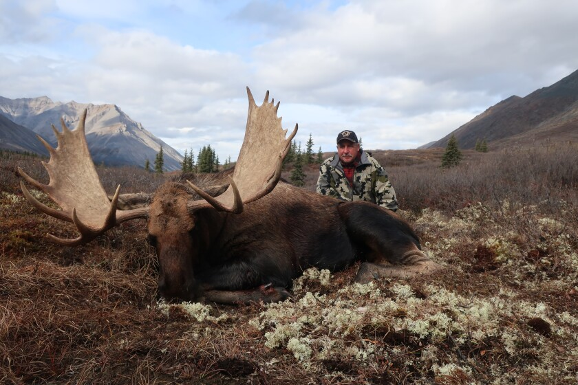 Washington hunter Jay Holzmiller poses by a moose that he shot in Canada's Yukon Territory