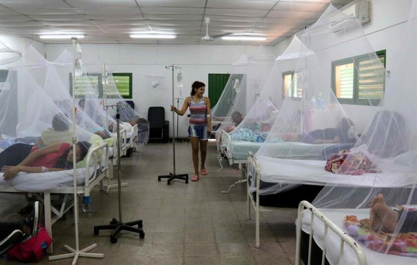 Asunción y once departamentos de Paraguay se encuentran afectados por el dengue, según el parte epidemiológico semanal divulgado hoy por el Ministerio de Salud Pública. EFE/Archivo