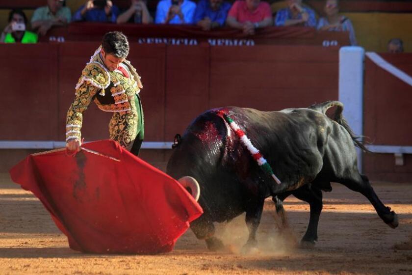 El diestro José Tomás da un pase con la muleta al primero de su lote, al que cortó dos orejas, durante la tercera corrida de la Feria de Algeciras celebrada esta tarde en la plaza de toros de Las Palomas de la localidad gaditana. EFE