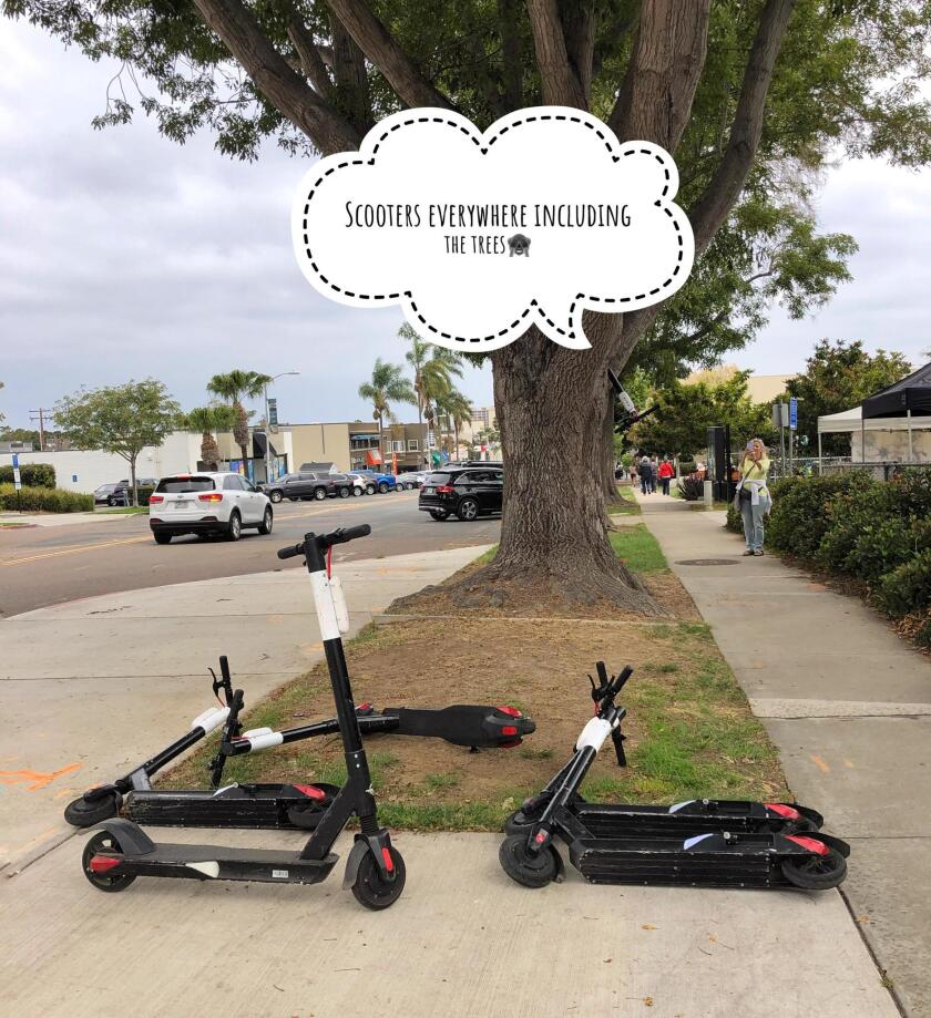 SAD SCOOTER SPOTTINGS: I took this photo Sunday, July 7 at the La Jolla Open Aire Farmers Market and at Windansea Beach. These dockless electric scooters certainly don't add to the beauty of La Jolla, they add to the concerns that are tarnishing our Jewel. — Cliff Oliver