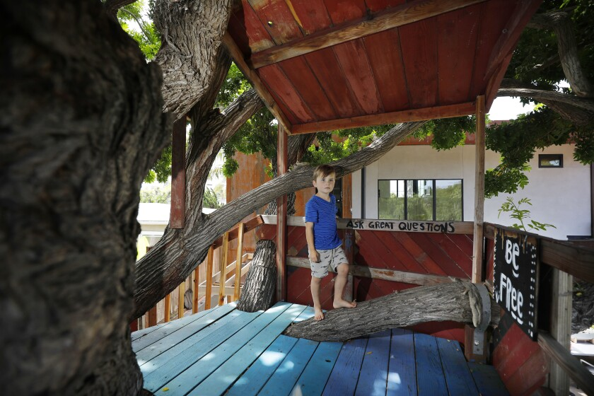 Easton shows off the main level of the treehouse, where the kids use the space to picnic, play games, read or do homework.