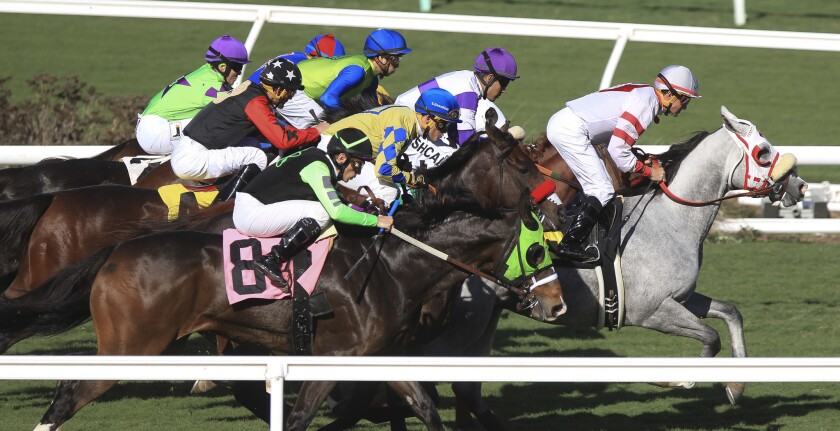Thoroughbred racing at Del Mar this year will see the introduction of new safety initiatives.