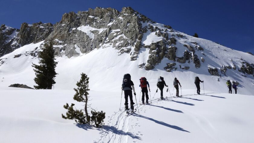 In this March 23, 2016, skiers move around a mountain in Sequoia National Park, Calif. A year after