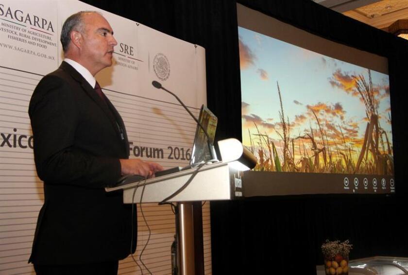El secretario de Agricultura de México, José Calzada Rovirosa. EFE/Archivo