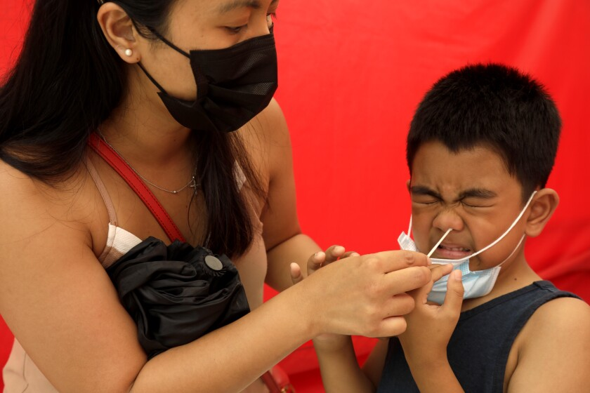 A mother swabs inside her son's nose. He grimaces