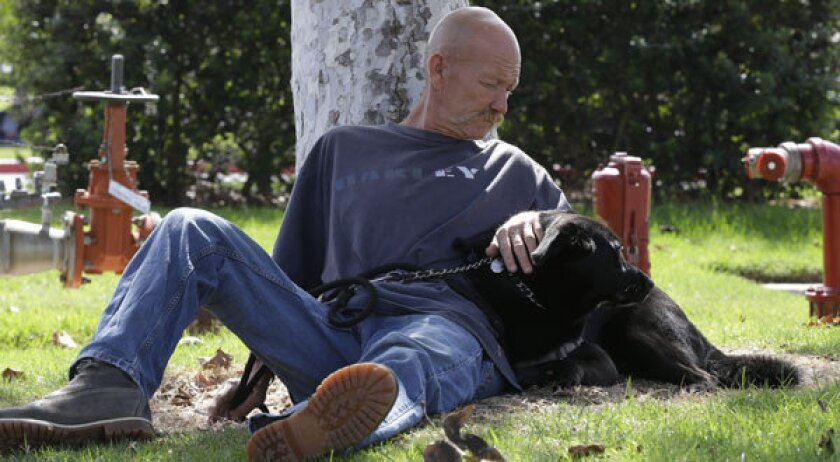 A homeless veteran and his dog. A new bill seeks to provide clothing for homeless veterans.