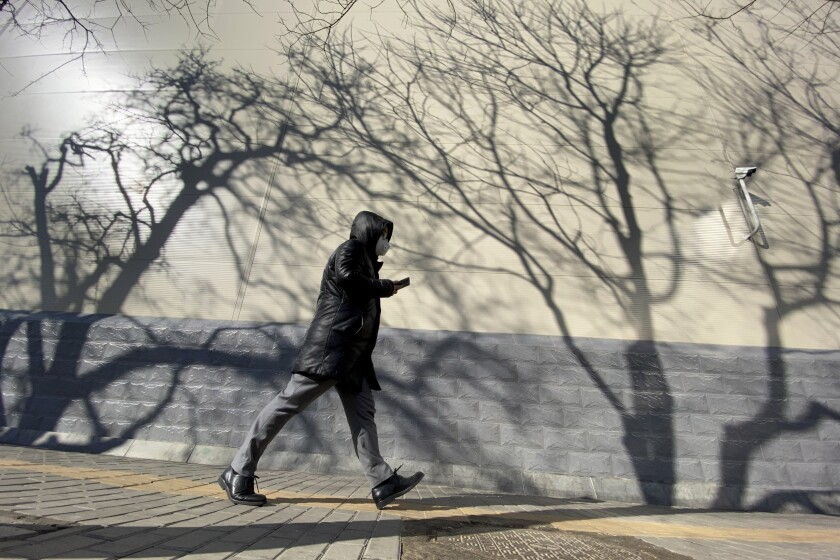 A resident walks past shadows cast by trees on a sunny day in Beijing on Tuesday.