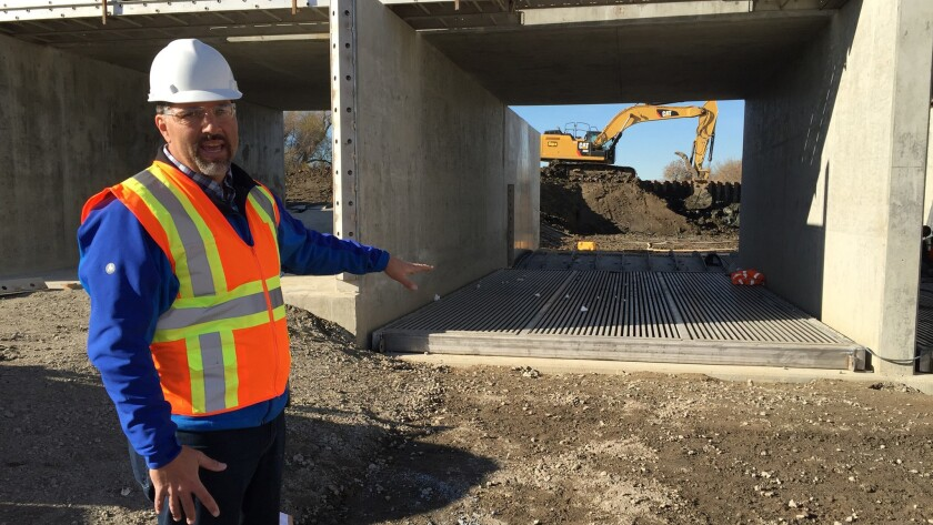 Reclamation District 108 General Manager Lewis Bair at Wallace Weir in the Yolo Bypass. The project will help with flood control and save endangered salmon that have strayed from the Sacramento River into drainage canals.