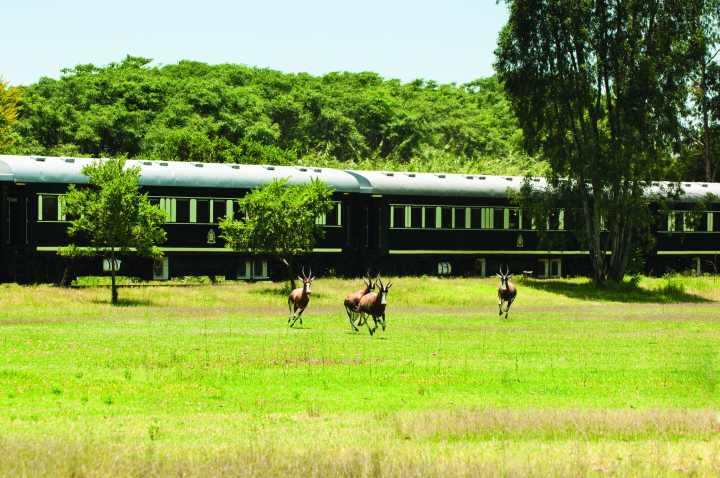 A tour of South Africa by train