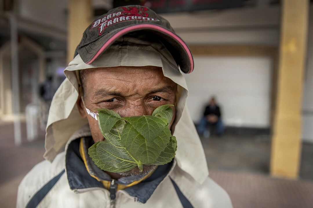 MOROCCO: A 55-year-old street vendor named Abderrahim poses for a portrait while wearing a mask made of fig leaves in Rabat.