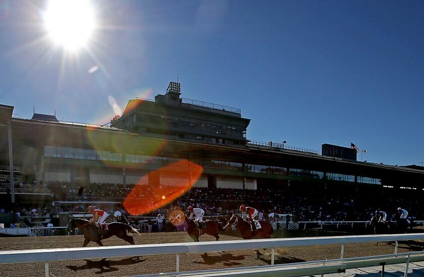 Jockeys and their horses race at Santa Anita race track.