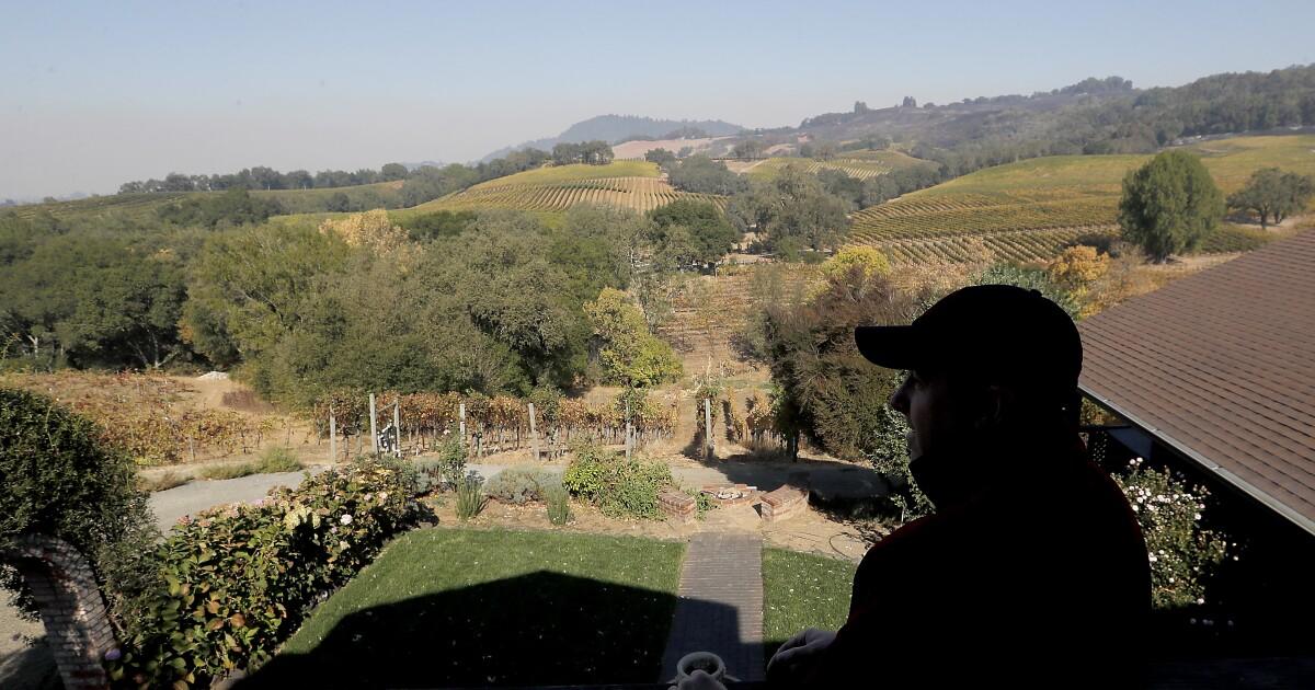 カリフォルニアのワインをすることは、火災国、破壊、恐怖