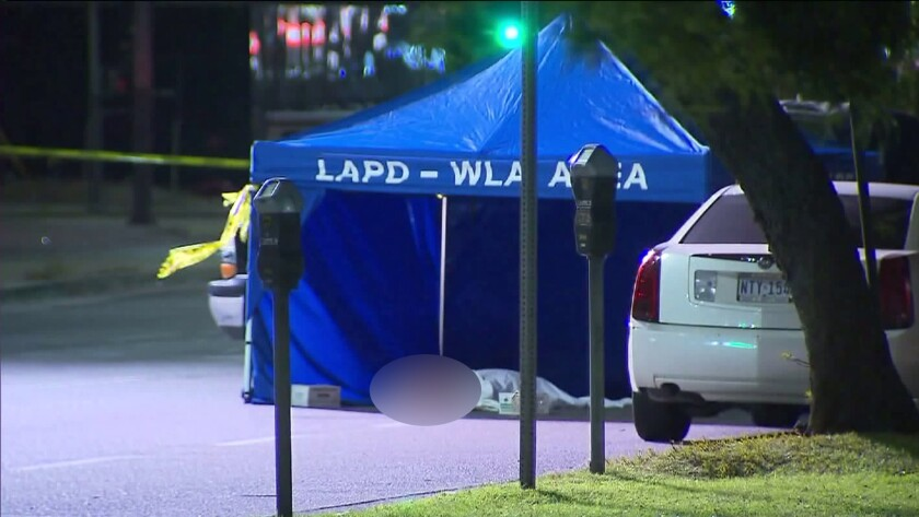 Police were asking the public to help locate the driver of a stolen vehicle that fatally struck a 15-year-old boy Sunday night in the Palms neighborhood.