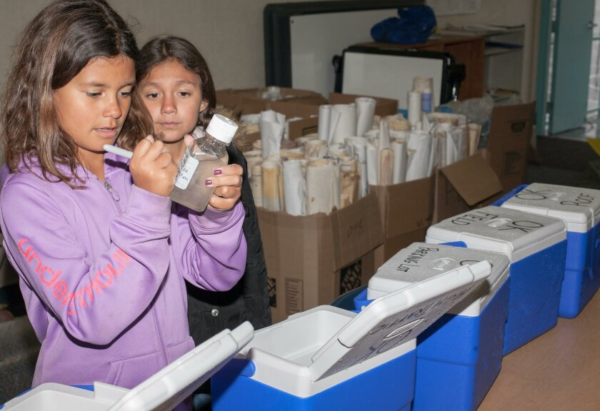 Ocean Knoll students Naia Riggenbach, left, and Taty Nava label rain samples collected at their school as part of the Stormwater Pollution Prevention Program (SWPPP). The samples were sent to a lab in Encina for analysis.