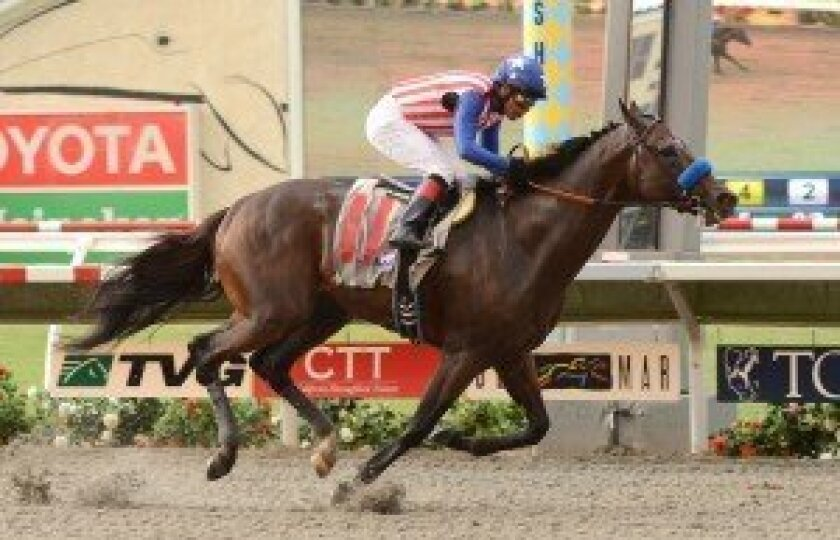 The 5-year-old Fed Biz took his rivals wire-to-wire in the Grade II $200,000 San Diego Handicap on Saturday at Del Mar, scoring by 5 1/4 lengths.
