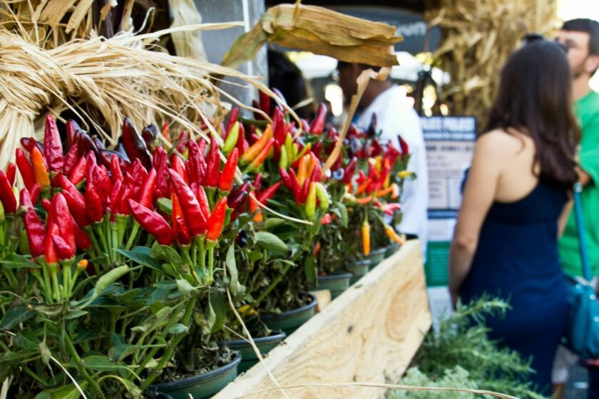 The annual Farm to Fork celebration in Sacramento will run Sept. 13-28.