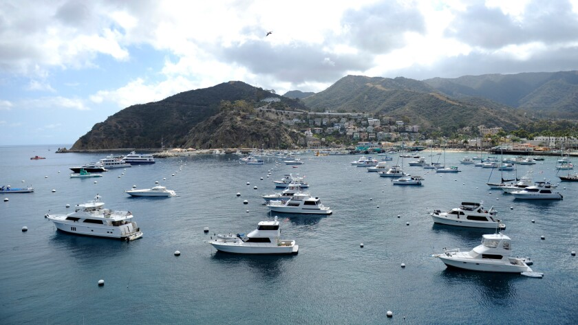 A view of the harbor from the Avalon Casino on Monday, October 6, 2015.