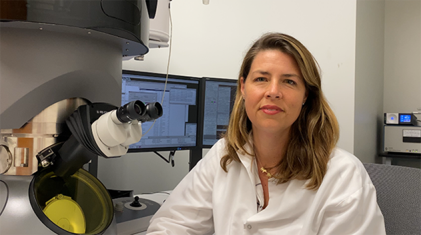 Erica Ollmann Saphire has been named chief executive of the La Jolla Institute for Immunology.