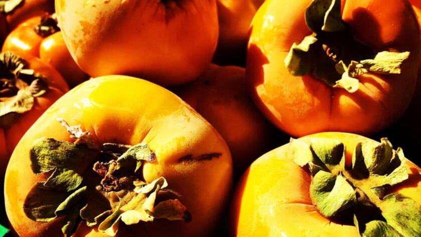 Fuyu persimmons at the Hollywood Farmers Market.