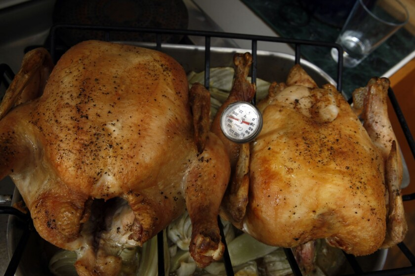 Chicken roasted in the oven is most likely not to be undercooked, according to a new study.