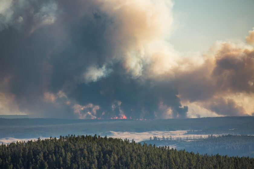 The Spruce fire burns the the backcountry of Yellowstone National Park. The blaze grew to about 1100 acres by Sunday morning.