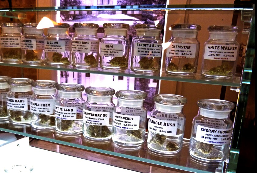 Strains of marijuana in rows of small glass jars on display at Arbors Wellness