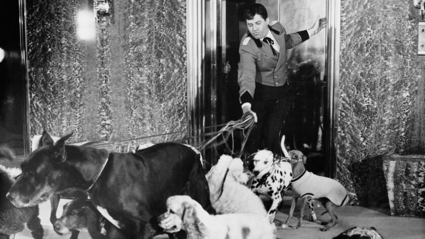 """Jerry Lewis in his 1960 directing debut, """"The Bellboy."""""""