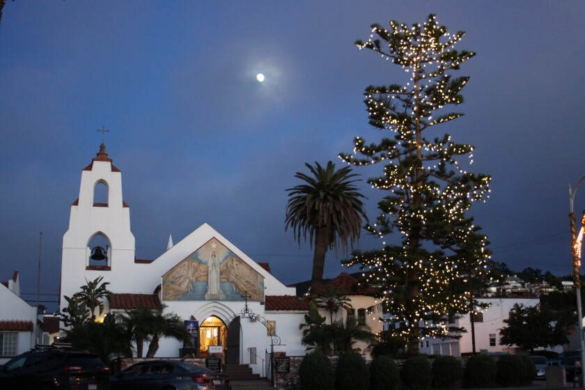 A Newport Pine tree towers over Mary, Star of the Sea Catholic Church at 7669 Girard Ave.