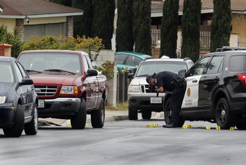 A San Diego Police investigator photographs the scene where at least two dogs were shot after attacking an elderly man in Bay Terraces Tuesday morning.