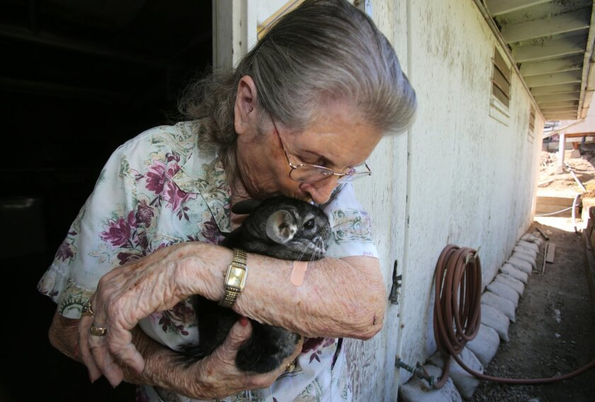 Lurlie Adams, 90, kisses her pet chinchilla, Lover Boy, at her home in Vista in this August 2014 file photo. Adams filed a lawsuit against PETA in October, alleging the animal rights group defamed her reputation. She died in December.