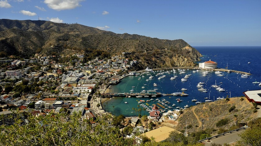 Neighborhood Spotlight Catalina Island Los Angeles Times