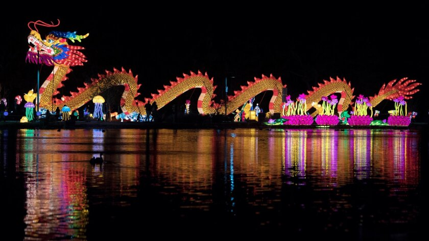 A large dragon is reflected in a pond on the opening night of the China Lights lantern festival Frid