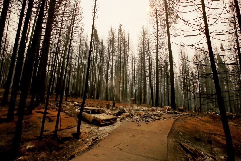 GRIZZLY FLATS CALIF. - AUG. 18, 2021. The Caldor Fire leaves a moonscape of burned forest, homes and vehicles in the unincorporated El Dorado community of Grizzly Flats on Wednesday, Aug. 18, 2021. (Luis Sinco / Los Angeles Times)