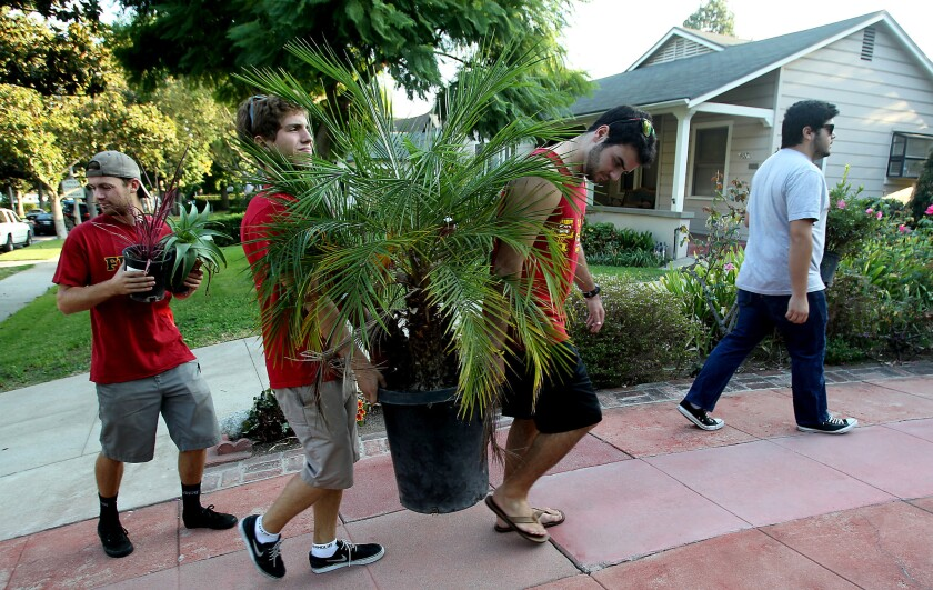 A group of fraternity members from USC walks along Almansor Street in Alhambra to hand out flowers and yard ornaments to residents on Thursday.