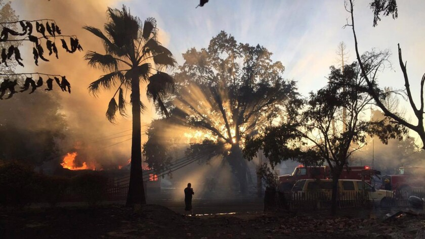Destruction in Lake County caused by the Clayton fire, which has destroyed over 175 structures while burning over 4,000 acres. An arson suspect has been arrested.