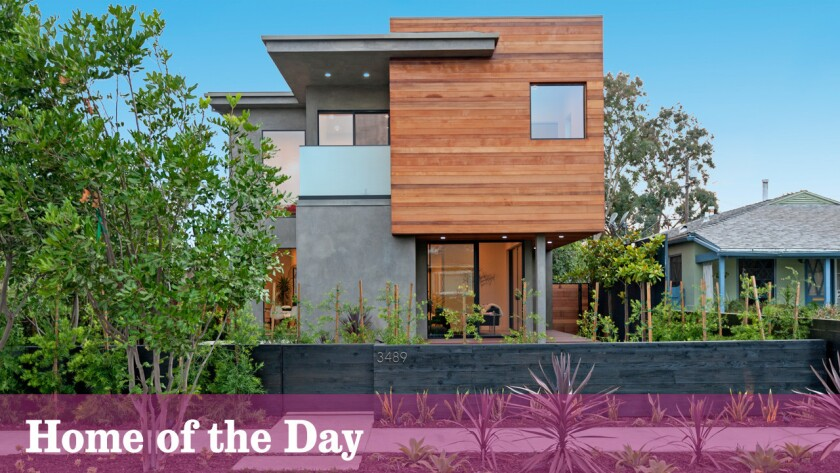 Home of the Day: Sunlit spaces and treetop views in Mar Vista