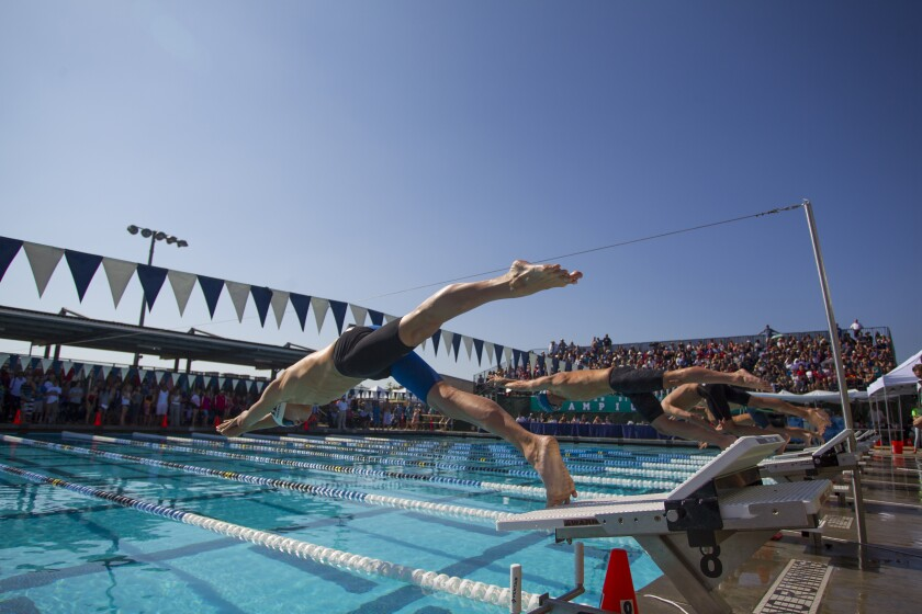 Del Norte's Joshua Freeman dives in at the start of the third 50 yard freestyle heat.
