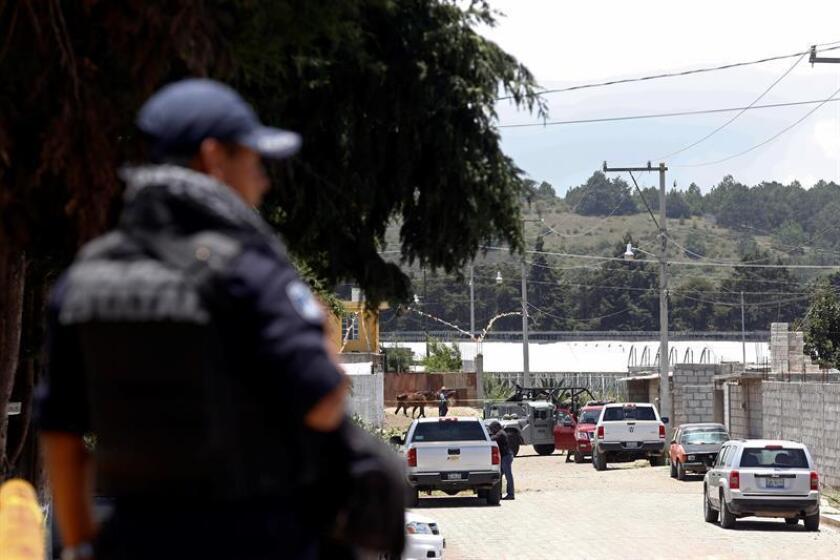 La Marina mexicana detuvo a Alfredo Cárdenas Martínez, conocido como el Contador, líder del cártel del Golfo en la ciudad fronteriza de Matamoros, desde donde coordinaba el tráfico de drogas a Estados Unidos, informaron hoy las autoridades mexicanas y medios locales. EFE/ARCHIVO