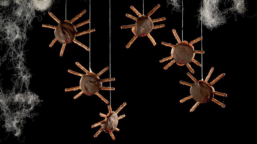 Halloween turtle spiders
