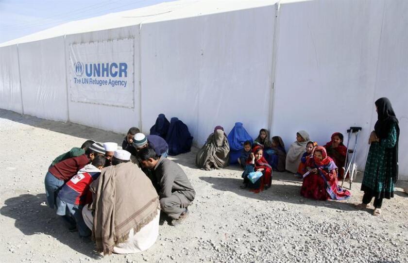 """El actor Liam Neeson (Irlanda del Norte, 1952) ha visitado esta semana el campamento de refugiados sirios de Zaatari, en Jordania, y ha destacado las historias de """"pérdidas"""" que cuentan los huidos de la guerra civil siria, informó hoy Unicef"""